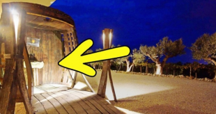 v-italii-ustanovili-fontan-o-kotorom-mechtal-kazhdyj-turist-google-chrome